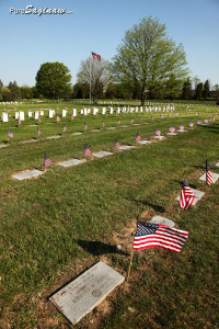 forest lawn saginaw michigan veterans