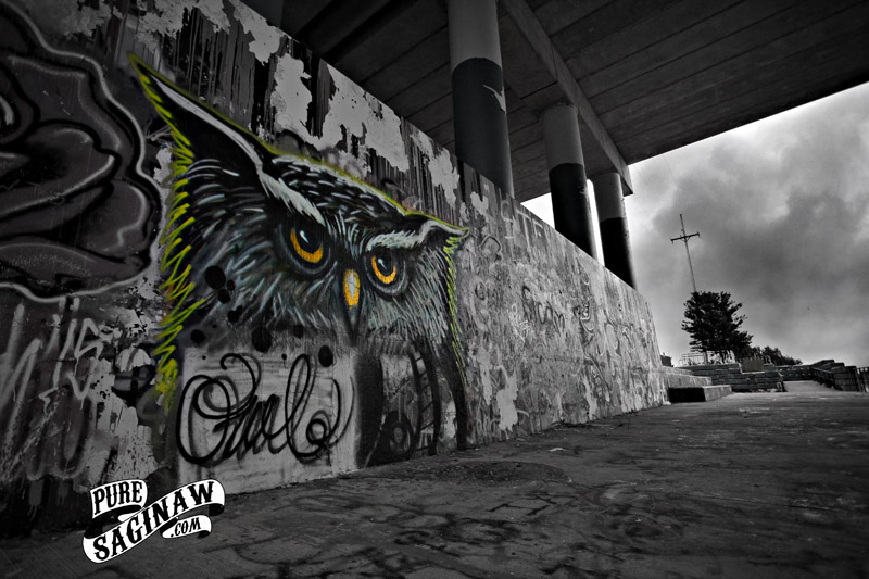 old town owl f